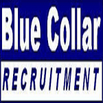 projectaconsultingtestimonials_bluecollarrecruitment_marketing client