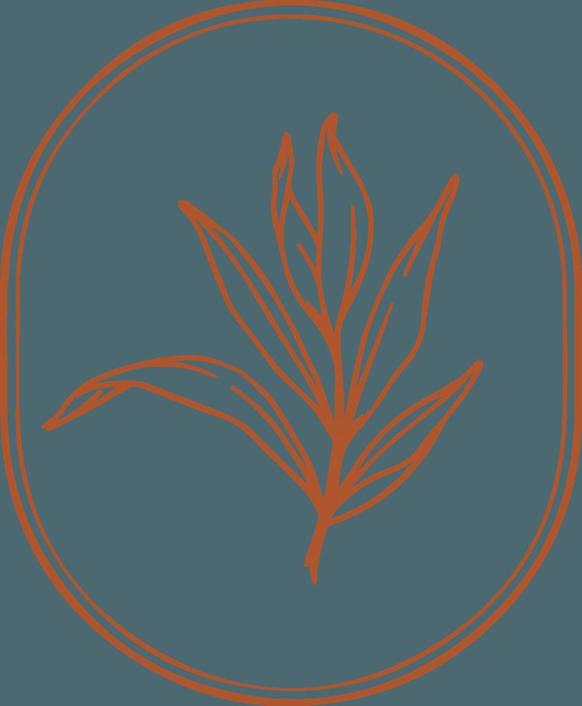 projectamarketingconsulting_logo_cxbotanics